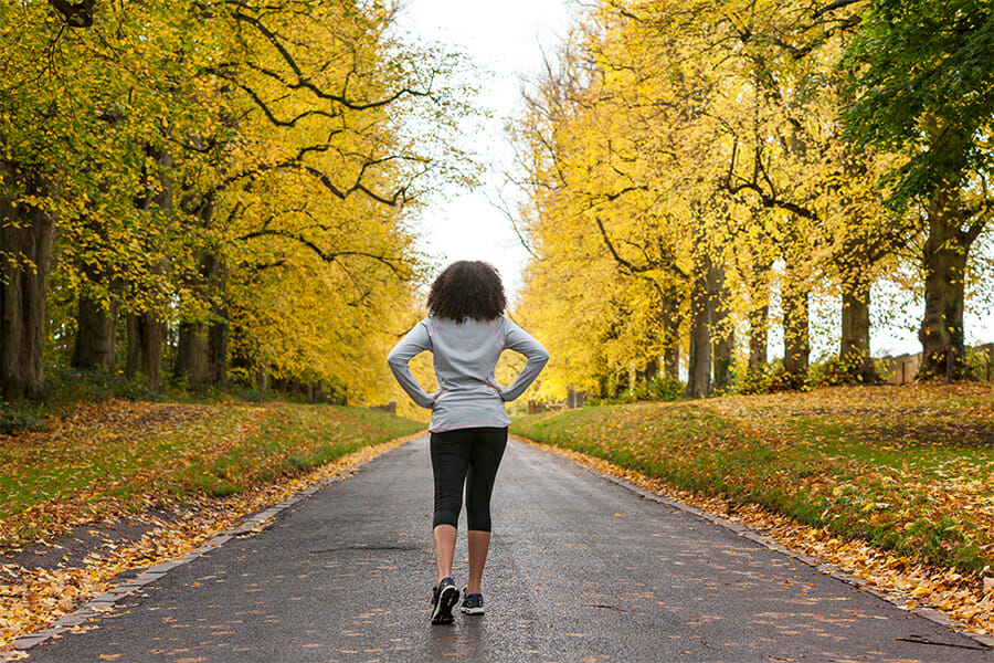 Fall Season Training Strategy