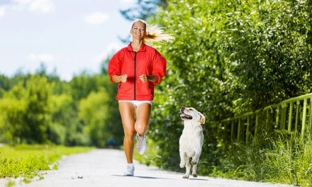 Safely Running With Your Dog